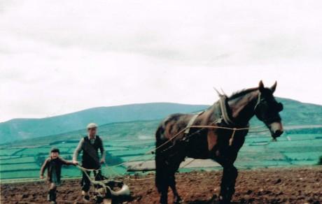 Farming  c.1960