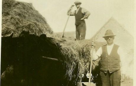 Haymaking in Kerry c.1920